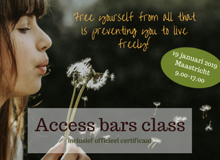Gecertificeerde Access Bars class in Maastricht (19 januari)