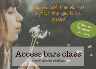 Gecertificeerde Access Bars class in Maastricht (17 mei 2019)