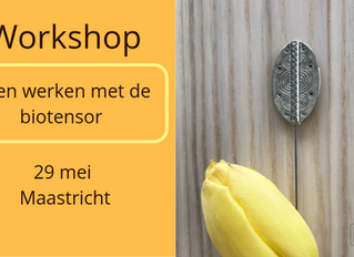 Workshop biotensor (29 mei 2019)
