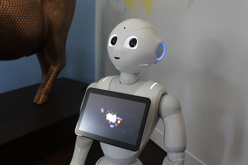 A white humanoid robot with big eyes and a screen looks at the camera