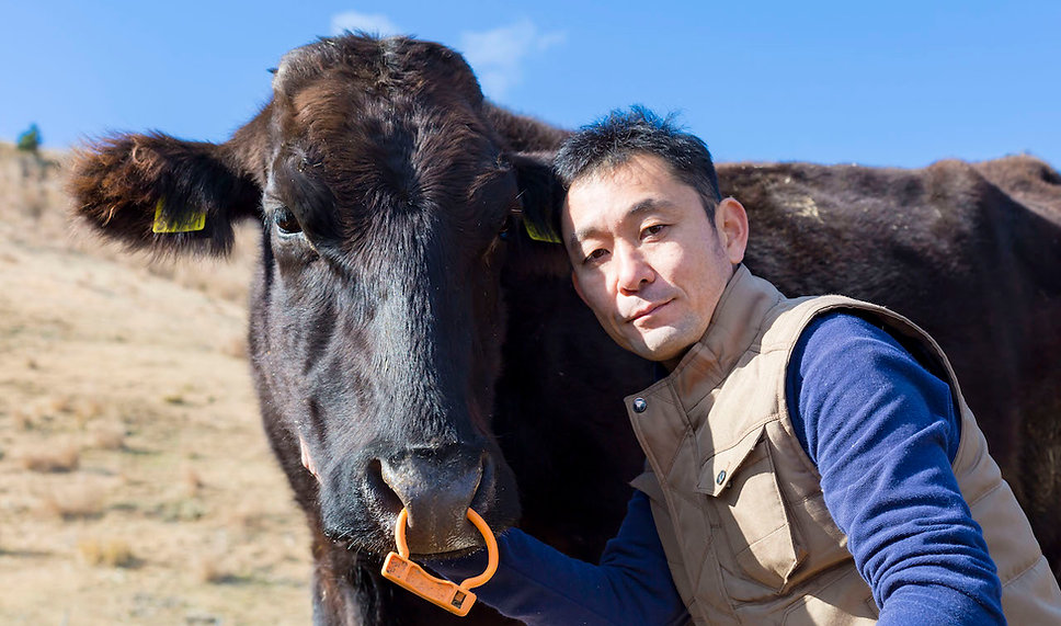 牛と.jpg