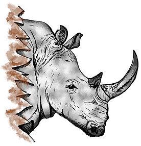 PaezArtDesgn Clip Art Illustrations | Animals: Rhino | Digital Art Graphics
