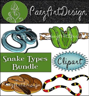 Snake Types Clip Art Bundle {PaezArtDesign}
