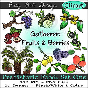 Prehistoric Era Clip Art Images | Food: Gatherer, Fruits & Berries, Wild Grape, Wild Olive, Marula, Lychee, Date Palm & More | History & Science Graphics | PaezArtDesign Digital Art