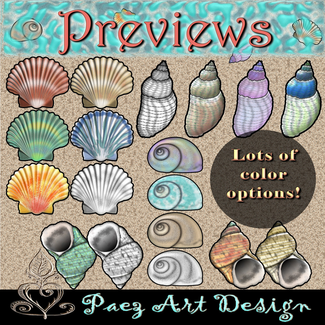 Sea Shell Clip Art {PaezArtDesign}