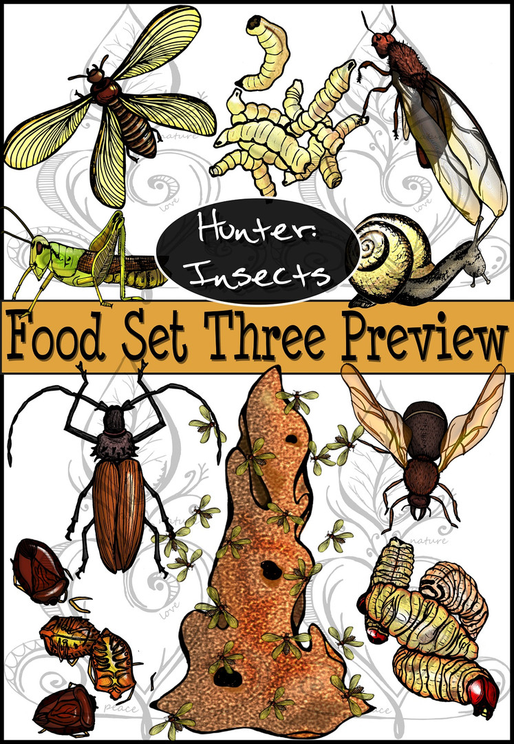 Prehistoric Era Foods: Hunter- Insects {PaezArtDesign}