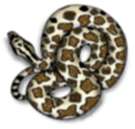 PAGE_mass_rattlesnake.jpg