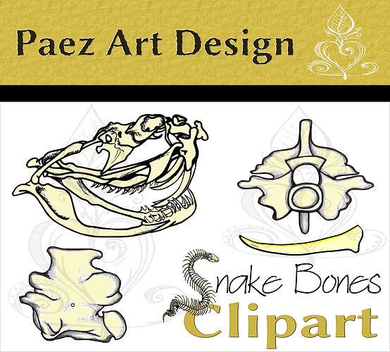 Snake Bones Clip Art {PaezArtDesign}