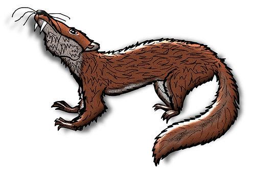 Prehistoric Era Clip Art Images | Animals: Ischyromys | History & Science Graphics | PaezArtDesign Digital Arts