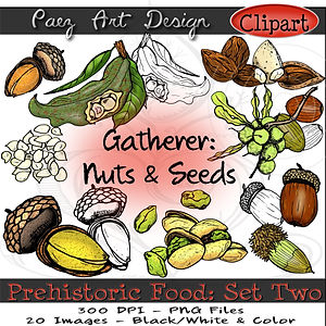 Prehistoric Era Clip Art Images | Foods: Gatherer Nuts & Seeds, Acorn, Mt. Tabor, Macadamia, Almonds, Pistachios & More | History & Science Graphics | PaezArtDesign Digital Art