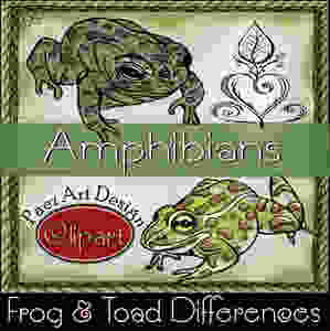 Learn more about frogs and toads, of the Amphibian class, in this Science clip art, geared for educational purposes!