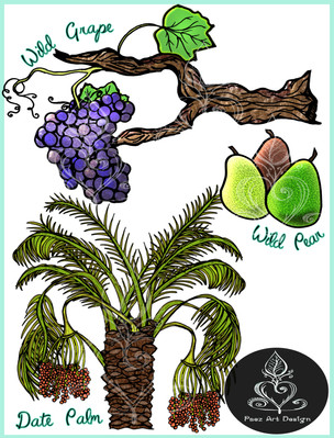 Prehistoric Era Foods: Gatherer- Fruits & Berries {PaezArtDesign}