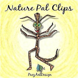Nature Pal Illustrations: Walking Stick