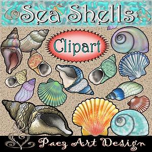 Sea Shell Clip Art Images | Seasonal & Fun Graphics | PaezArtDesign Digital Art