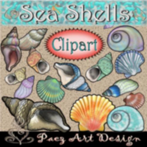 Sea Shell Clip Art {PaezArtDesign}