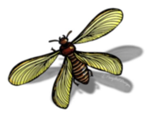 Prehistoric Era Clip Art Images   Food: Termites   History & Science Graphics   PaezArtDesign Digital Arts