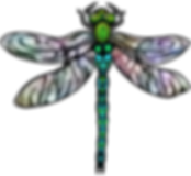 Dragonfly Graphic | Insect Clip Art | PaezArtDesign