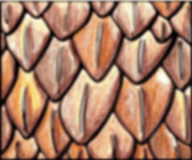 Snake Anatomy Clip Art Bundle- Scales