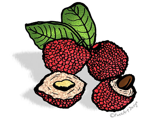 Prehistoric Era Clip Art Images | Food: Gatherer, Fruits & Berries, Lychee | History & Science Graphics | PaezArtDesign Digital Art