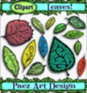 Leaf Clip Art Images   Plant & Nature Graphics   PaezArtDesign Digital Art