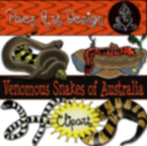 Australian Venomous Snakes Clip Art {PaezArtDesign}