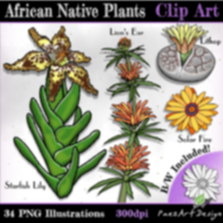 African Native Plants Clip Art Illustrations | Plant & Nature Graphics for Education | PaezArtDesign Digital Art