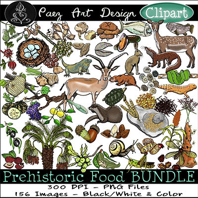 Prehistoric Era Clip Art Images | Food BUNDLE: Fruit, Berries, Nuts, Seeds, Insects, Grains, Meat, Hunter, Gatherer | History & Science Graphics | PaezArtDesign Digital Art