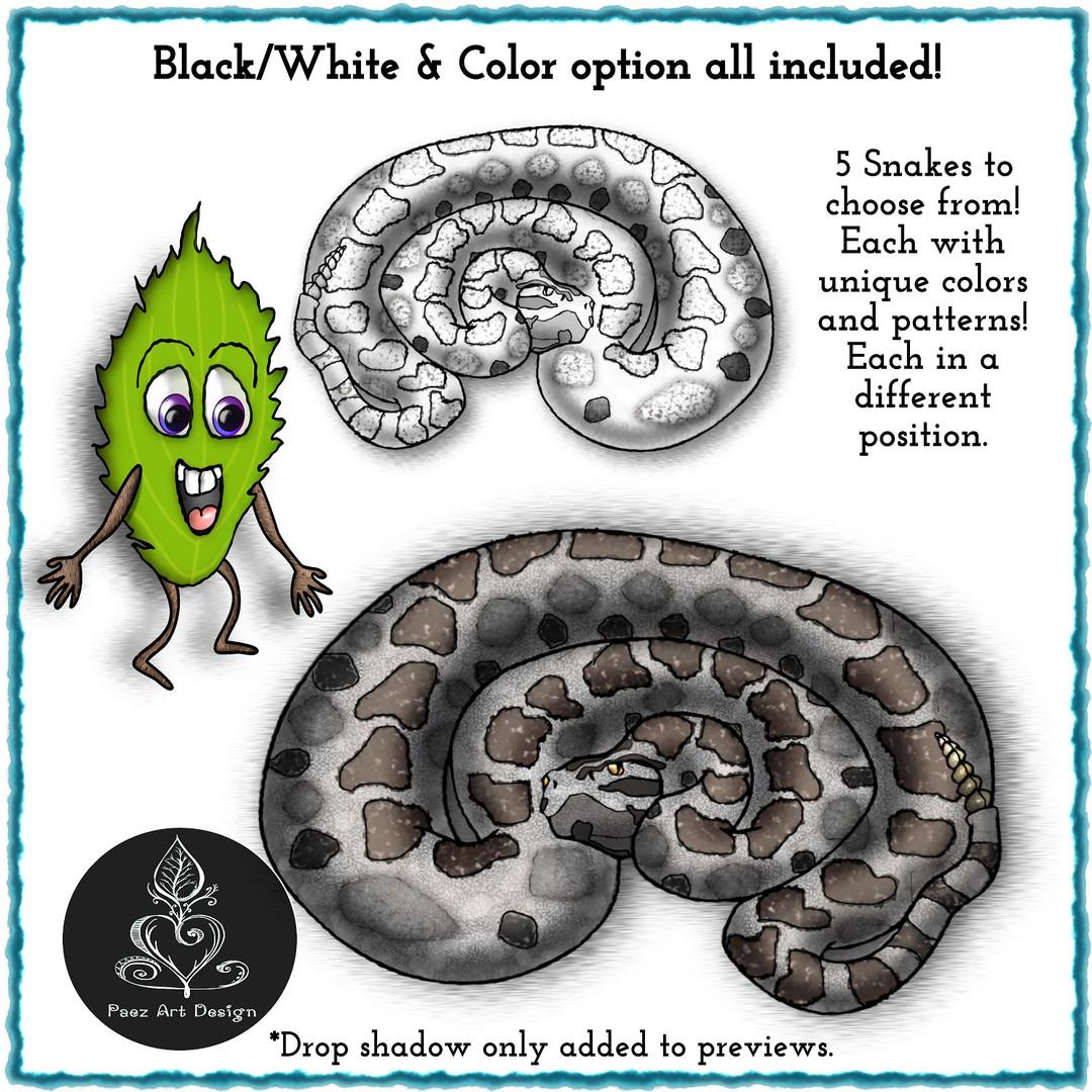 Massasauga Rattlesnake Clip Art {PaezArt