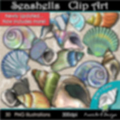 Seashells Clip Art Illustrations | Animal, Nature, Seasonal, Summer Graphics | PaezArtDesign Digital Art Images