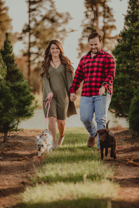 Couple Walking their Dogs