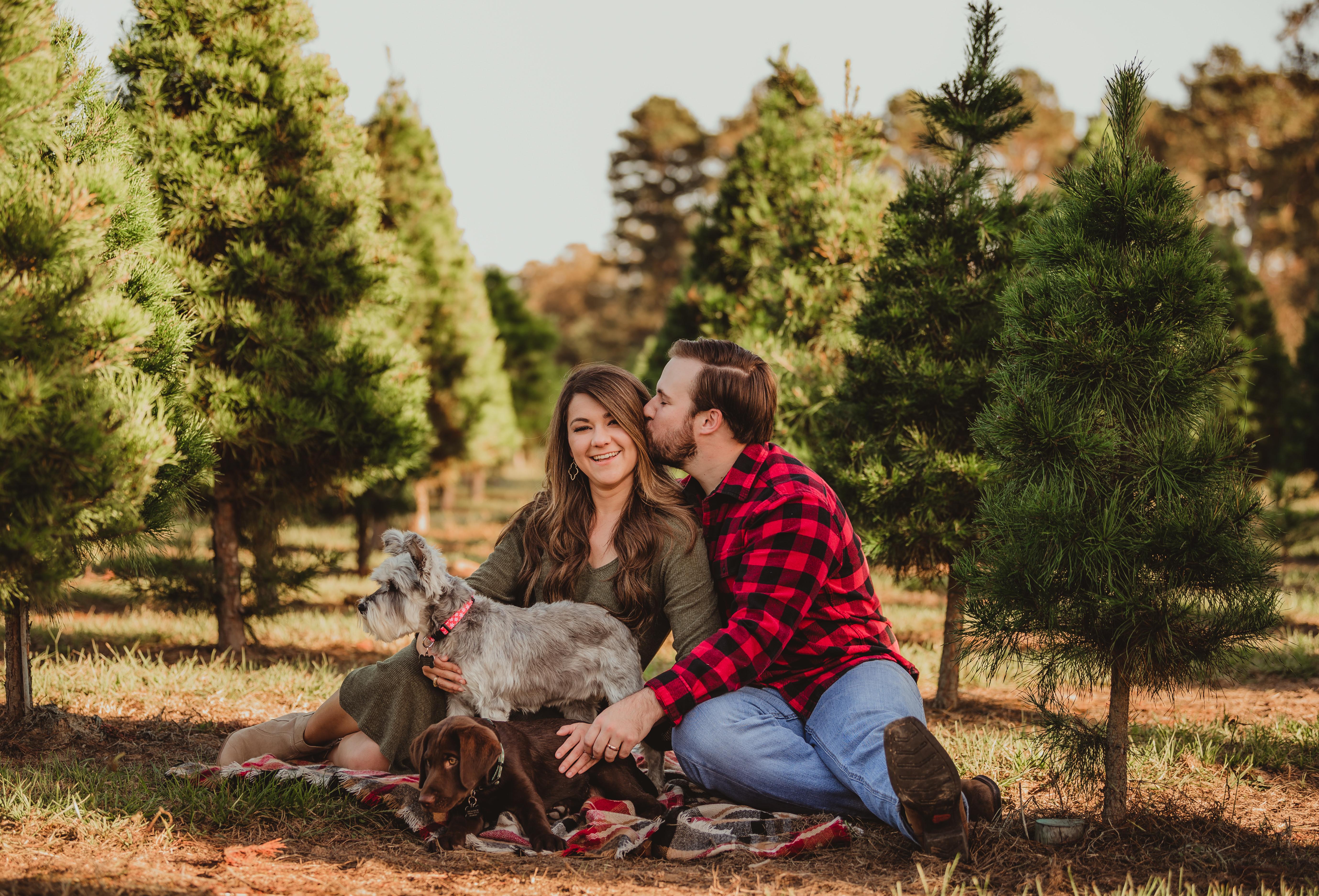 A Christmas Tree Farm Adventure