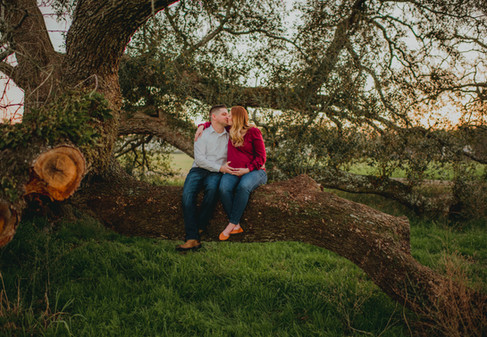 Couple Sitting on a Tree