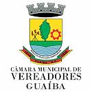 camara municipal.png