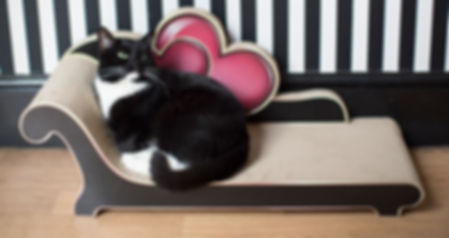 Lilly's Love Seat by 3 Fat Cats