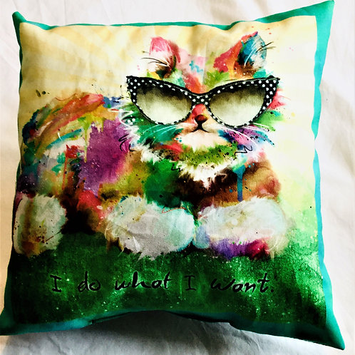 SASSY CAT CATNIP PILLOWS