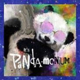 SASSY PANDA CATNIP PILLOW WITH RATTLE