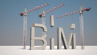 BIMFG.jpg