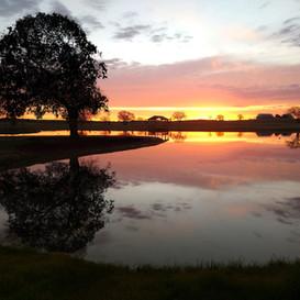 CC Pond Sunrise