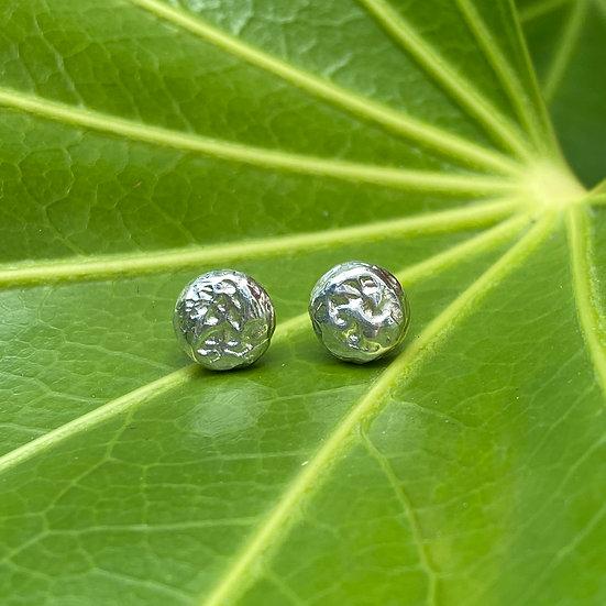 Silverknappörhänge