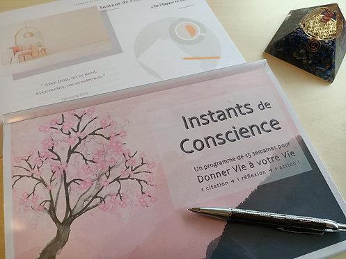 Instants de Conscience - un programme de 15 semaines pour Donner Vie à votre Vie