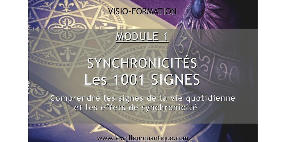 FORMATION EN LIGNE / VENDREDI 11 SEPTEMBRE 2020 / LES 1001 SIGNES - SYNCHRONICITÉS MOD 1