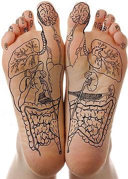 nella pianta del piede ci sono i punti riflessi dei nostri organi e non solo...