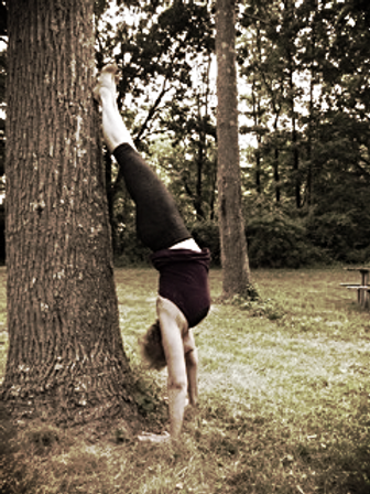 Amy Hamilton Yoga - Adho Mukha Vrksasana