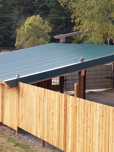 The finished roof and fence line