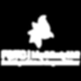 logo-ichysanti.png
