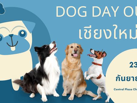 """""""DOG DAY OUT"""" เชียงใหม่วันที่ 23-29 กันยายน 2563"""