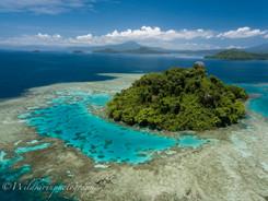 島とサンゴ礁 キンべ湾、パプアニューギニア