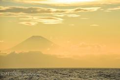 夕焼けの富士山 三浦半島、日本