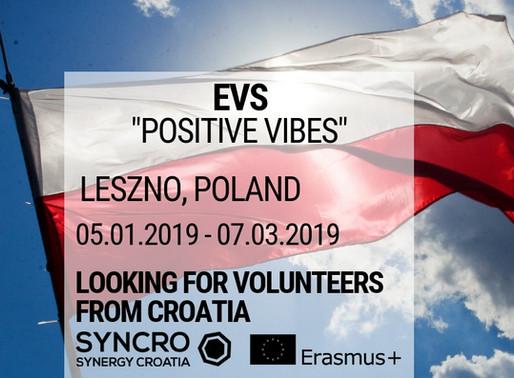 EVS│ Leszno, Poland │ Fundacja Cat
