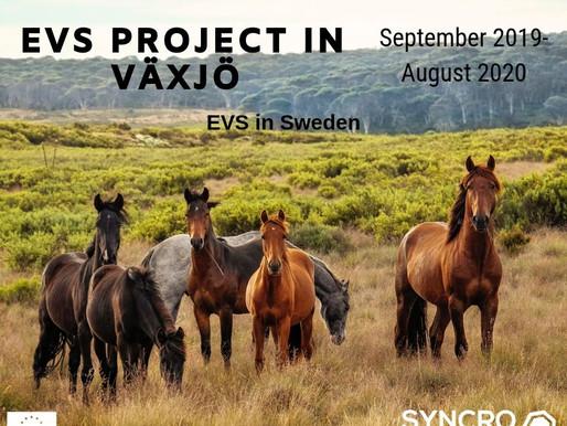 EVS│ Växjö, Sweden 🇸🇪 │EVS PROJECT IN VÄXJÖ